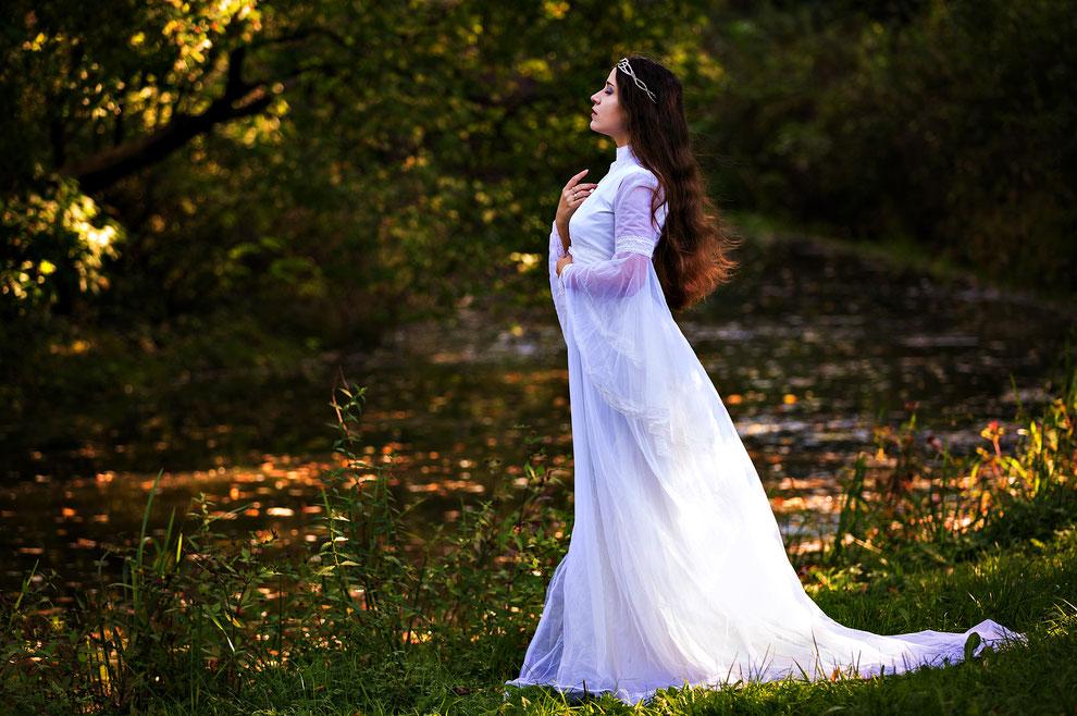blog over fairies, waar fairies vandaan komen, natuurkrachten en hoe je fairies kunt vinden