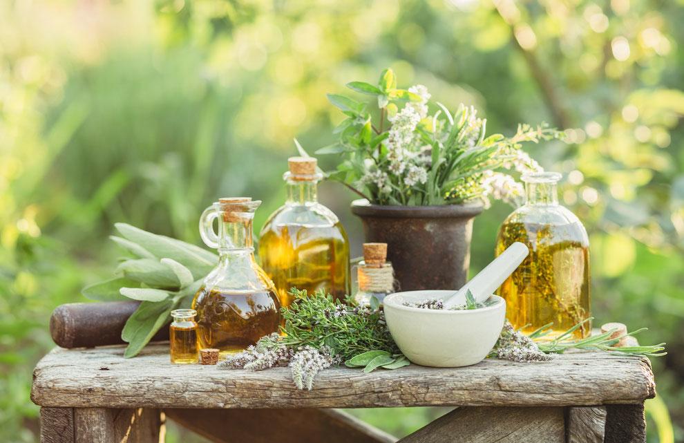 Top 5 van geneeskrachtige kruiden die in de Outlander apotheek van Claire Fraser niet ontbraken, hun werking, de feiten en de fabels