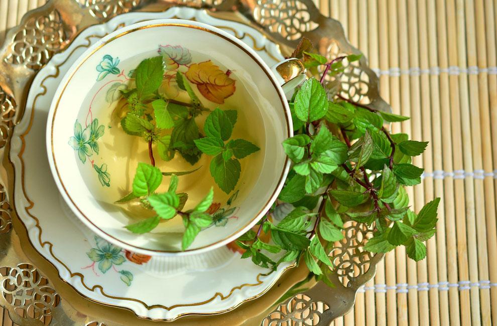 blog over pepermunt als een van de geneeskrachtige kruiden die Claire Fraser in Outlander gebruikte
