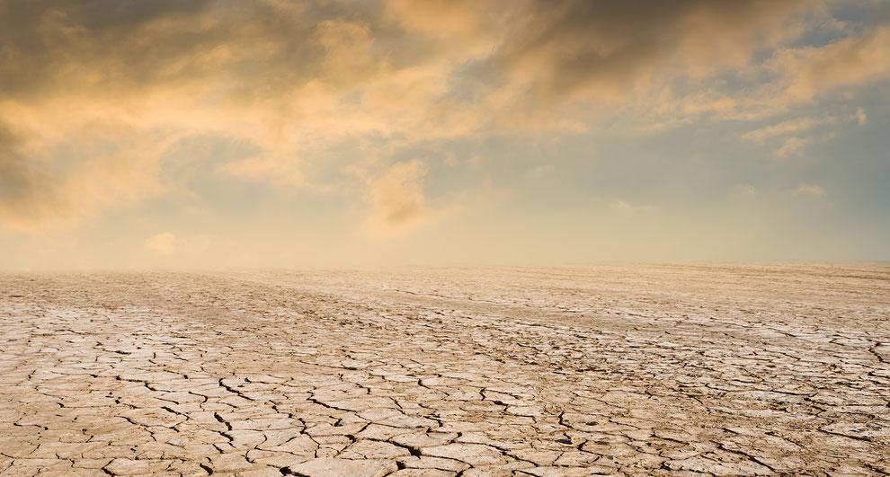 blog over droughtlander, de periode tussen twee outlander seizoenen, nieuwe huisstijl en zomerkleuren trends