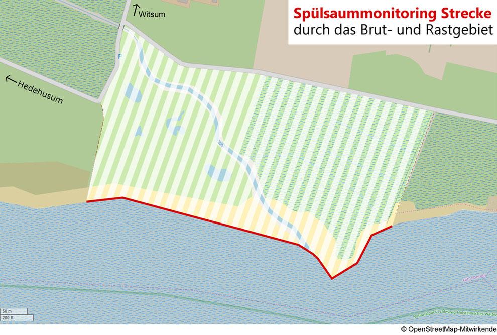 Monitoring-Strecke in der Godelniederung Föhr