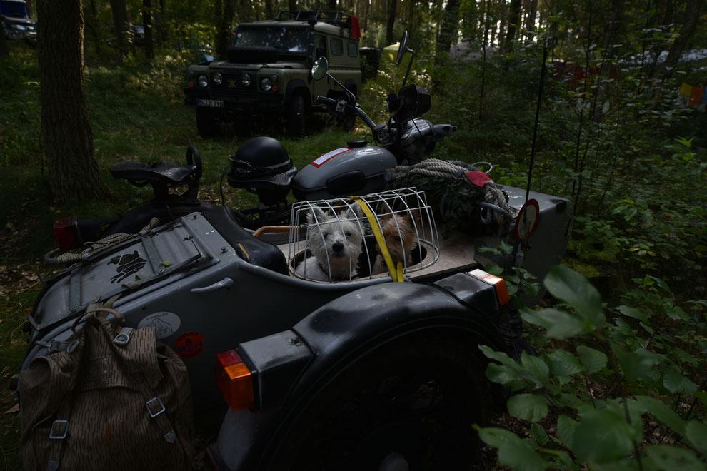 AMR, 21.AMR-Globetrotter-Treffen, Globetrotter, Reise-beast, Land Rover, Defender td5