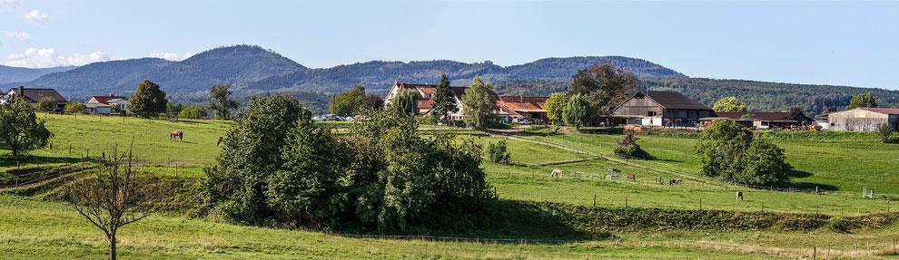 Der idylische Winkler Hof in Gaggenau Winkel