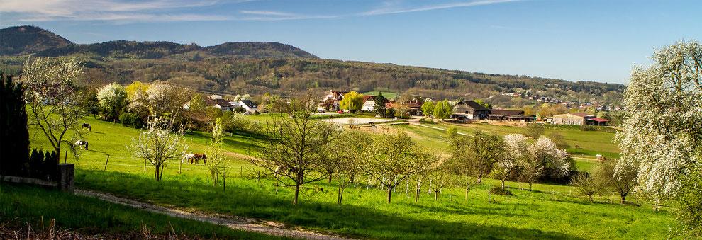 Blick auf den Winklerhof                                                                                                                                                               Foto Otmar Schmitt