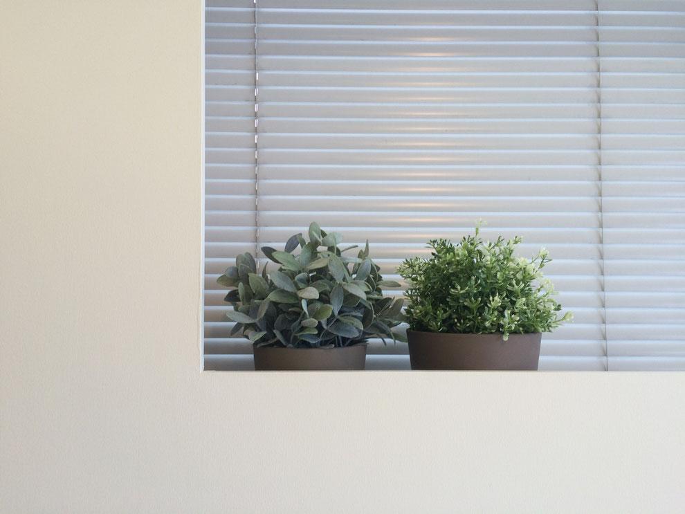 窓枠グリーン