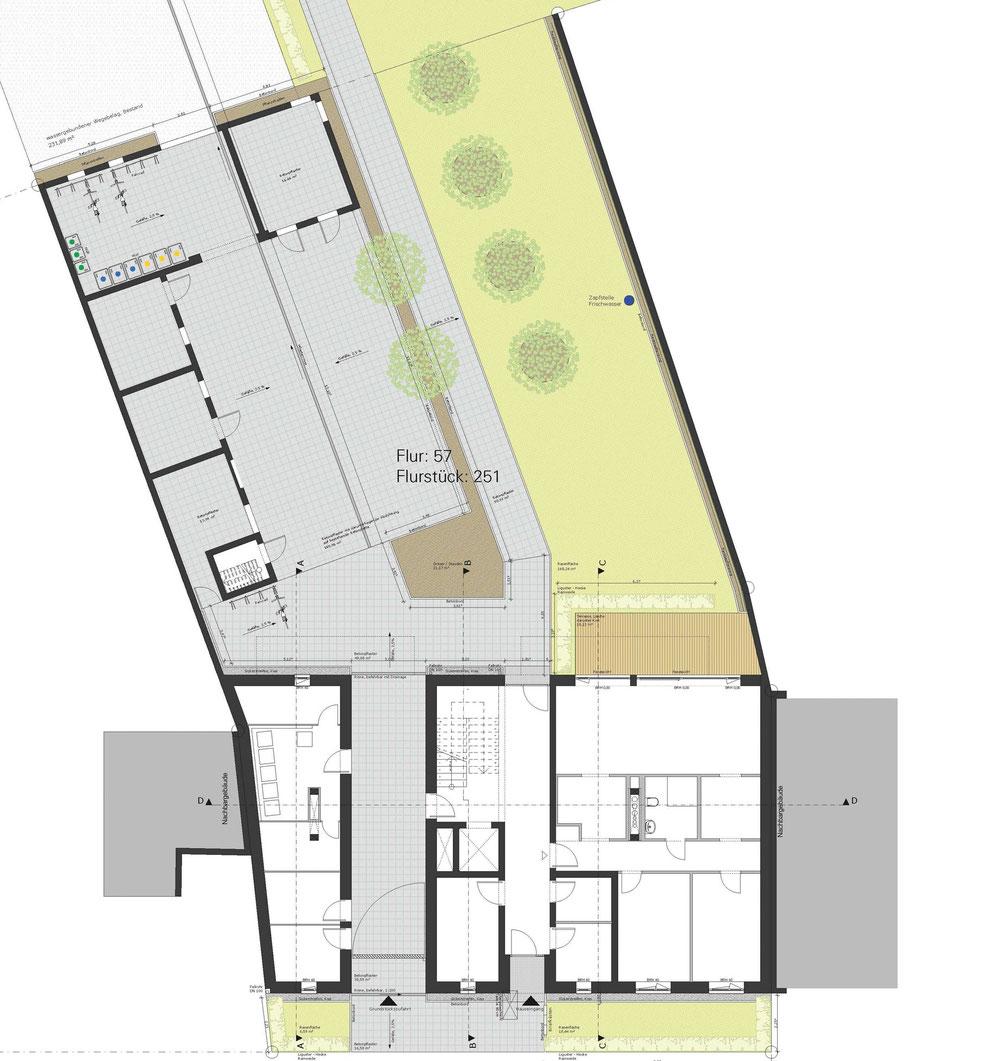 Entwurfsphase: Grundriss Erdgeschoss mit Außenanlagen der vorderen Grundstückshälfte
