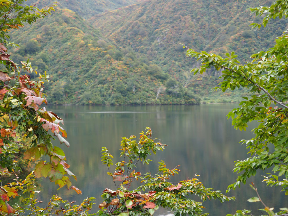 タキタロウ山荘前から望む大鳥池