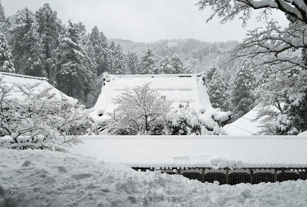 雪の大本山永平寺-4