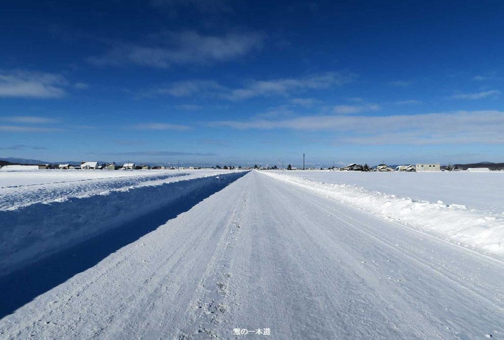 雪の一本道