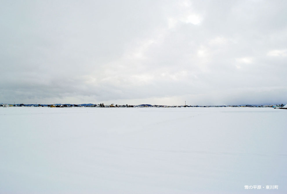 雪の平原・東川町