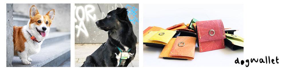 Gassi gehen mit Dogwallet. Praktisches Täschchen für Hundesteuermarke