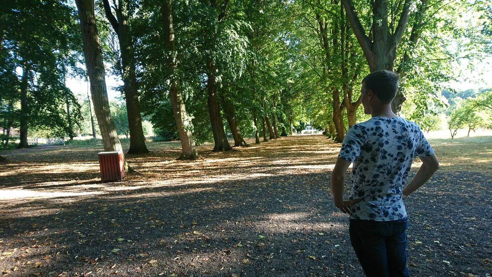 地域の人たちで手入れをしている公園_ウォリス