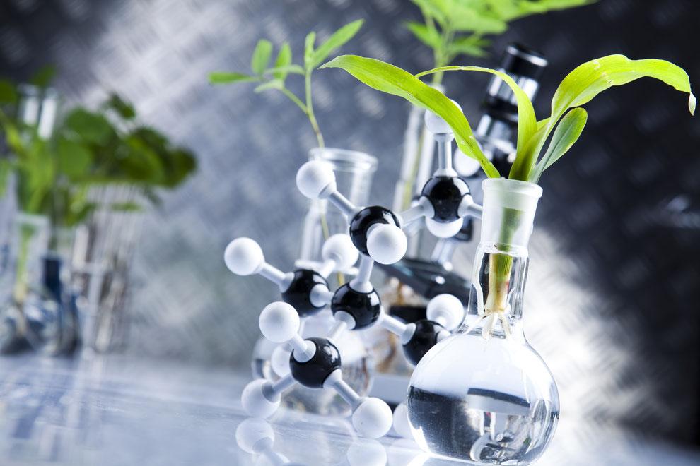 Wissenschaft gepaart mit nachhaltiger Entwicklung und Produktion - BIOMEDCOS