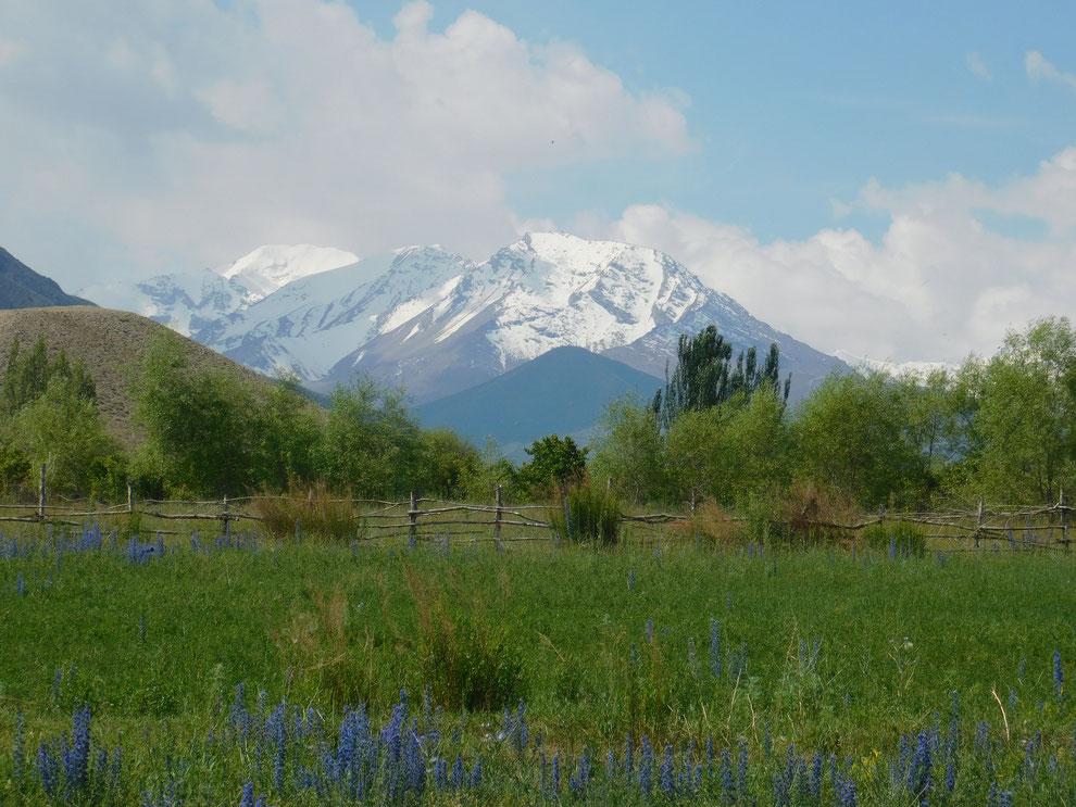Alatau-Gebirge (Kirgisistan)