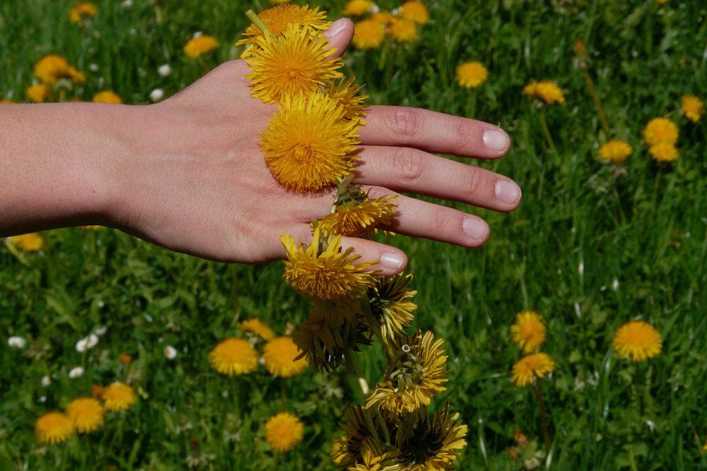 Handseifen für schonende Pflege der Hände