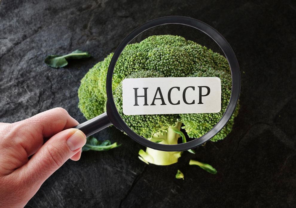Qualitätsoptimierung mit HACCP, HACCP wird unter die Lupe genommen