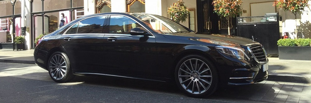 Limousine, VIP Driver and Chauffeur Service Horn - Airport Transfer and Shuttle Service Horn