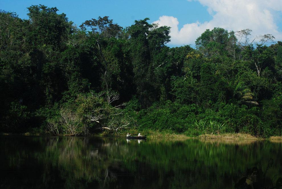 Dschungeltouren in Peru im Amazonasgebiet mit PERUline