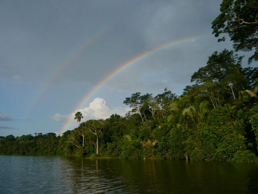 Das Amazonasgebiet in Peru bietet viele Möglichkeiten für Dschungeltouren