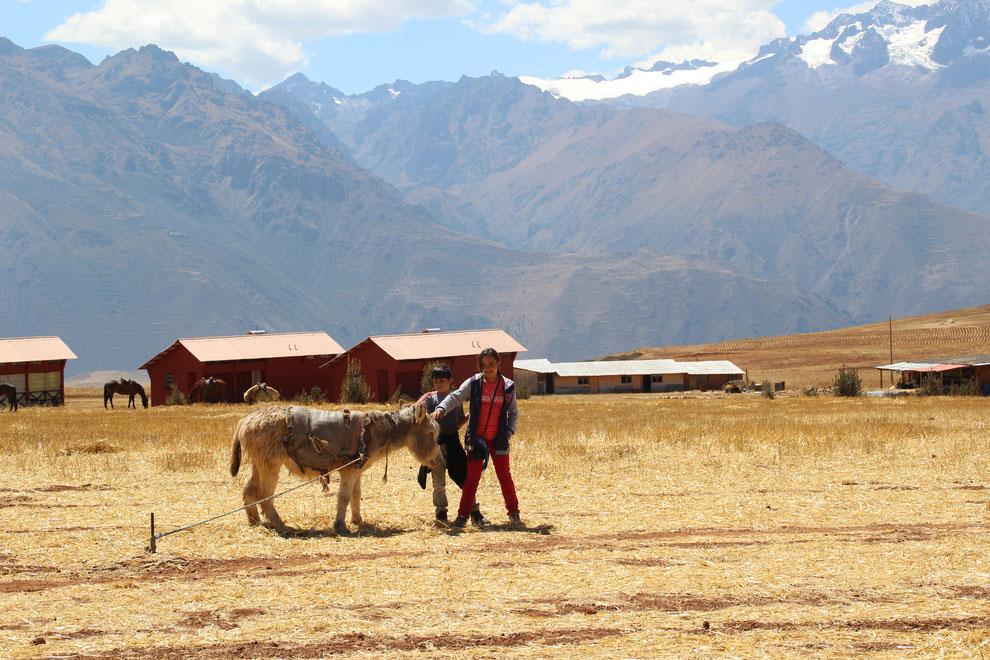 Reisen mit Kindern nach Peru_ PERUline ist Spezialist