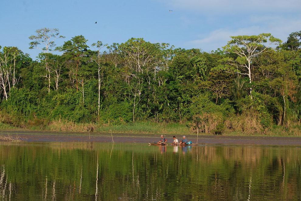 Touren in den peruanischen Regenwald mit PERUline