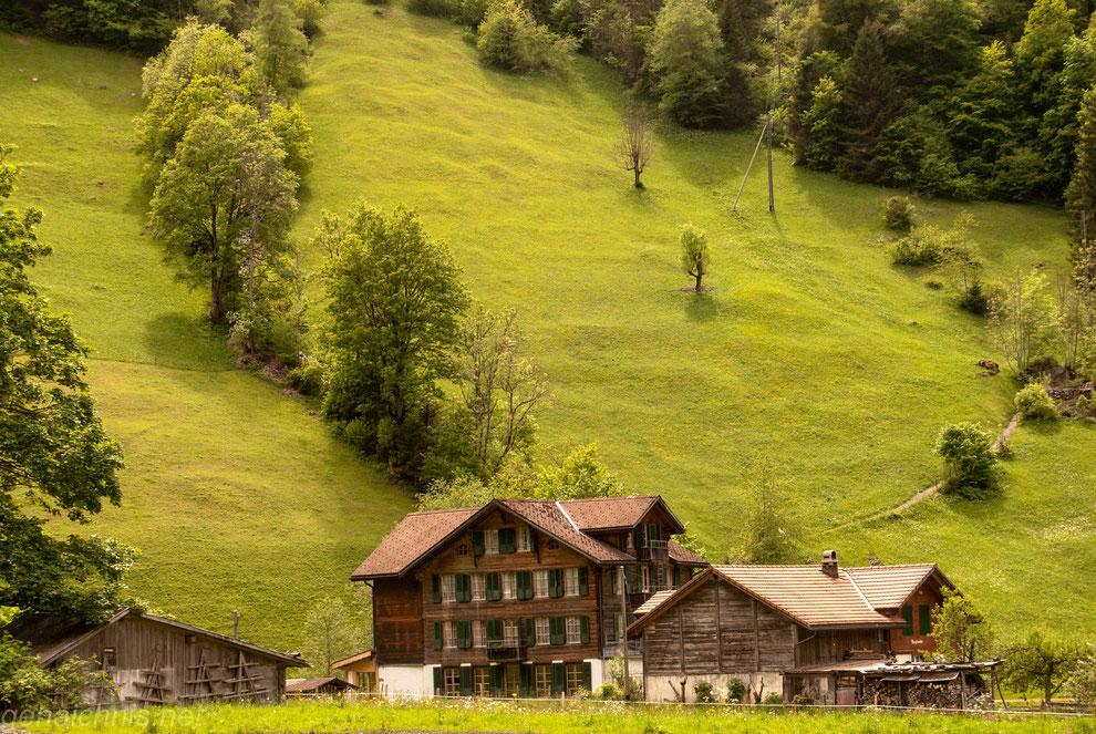 Der Alpenhof Stechelberg liegt idyllisch am Ortsrand