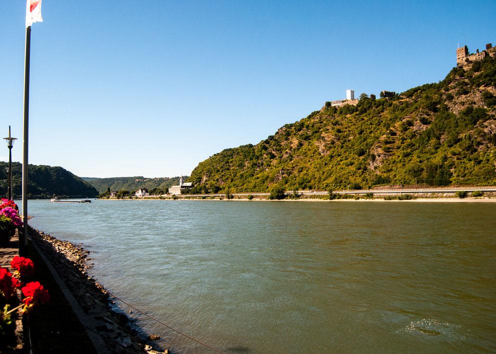 Der Rhein. Auf dem Weg zur Nordsee.