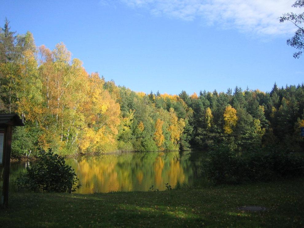 Am Waldsee, Argenthal