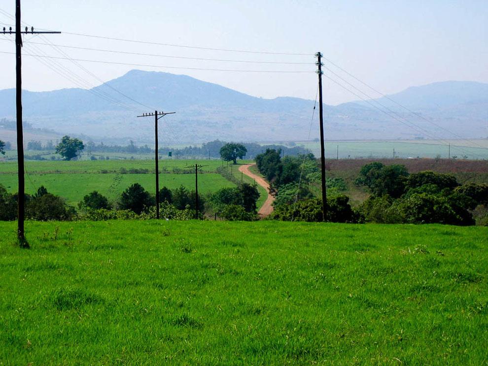 Middleveld, das fruchtbare Hügelland im Swasiland