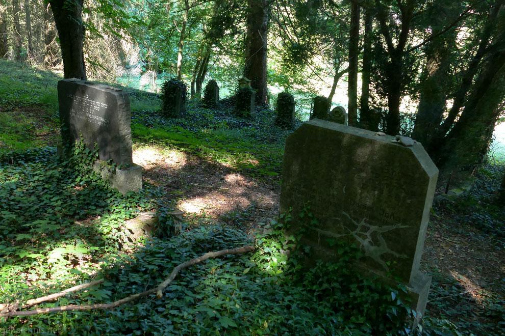 Der seit 1989 unter Denkmalschutz stehende Judenfriedhof östlich von Waldbreitbach oberhalb des Wiedufers