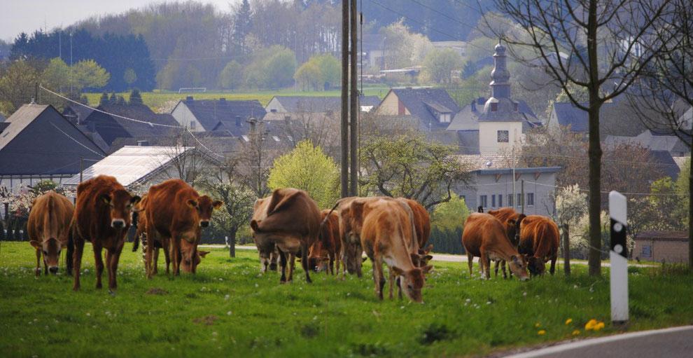Bei Frankweiler