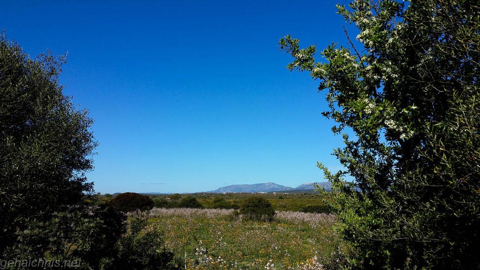 Pausen nutzen und Umgebung genießen. Blick auf die Hänge des Supramonte-Massivs. Reparaturpause 1.