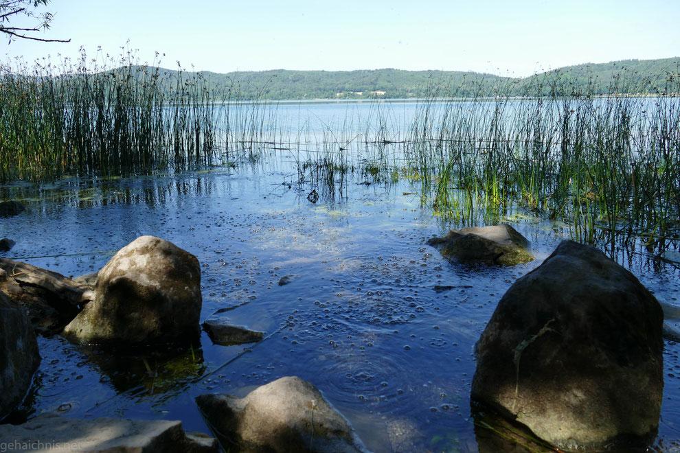 Mofetten am Ostufer des Sees