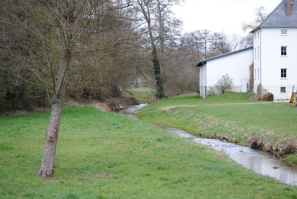 Külzbach bei Neuerkirch/Hunsrück