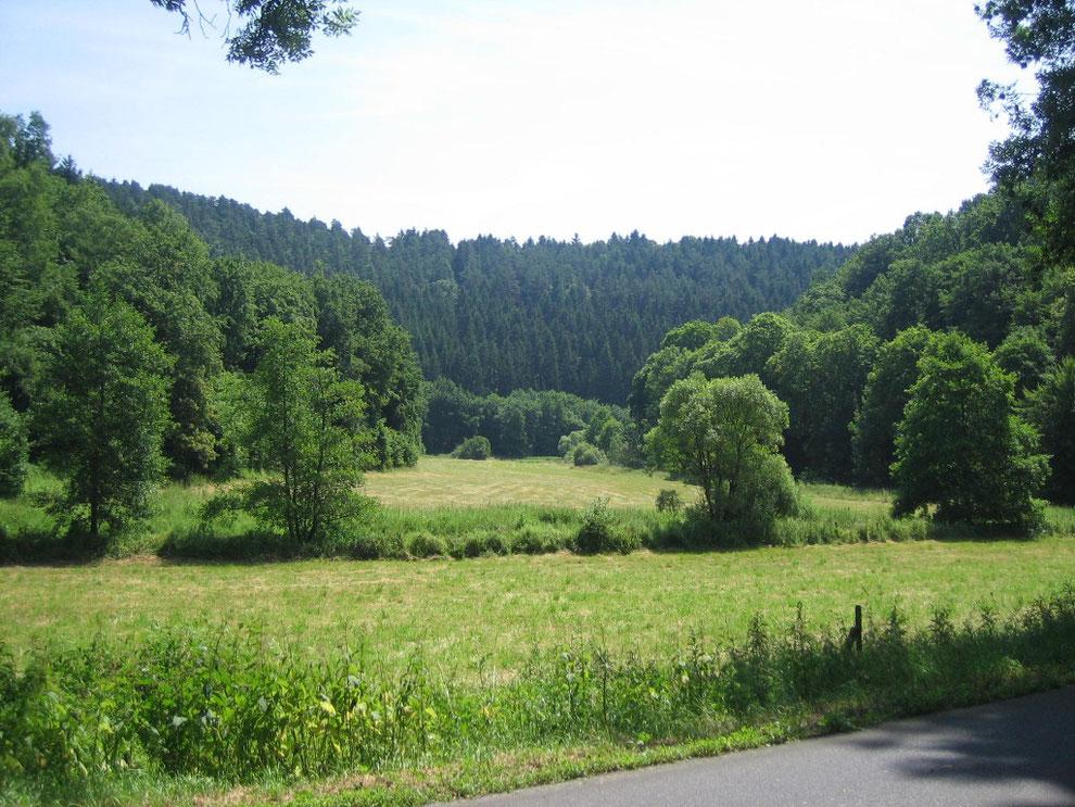 Gelbachtal zwischen Weinähr, Lahn, und Montabaur, Westerwald