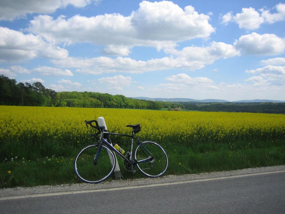 Blick zum Soonwald/Hunsrück