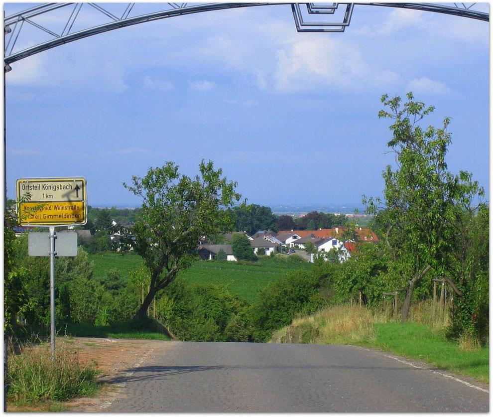 Von Gimmeldingen nach Königsbach