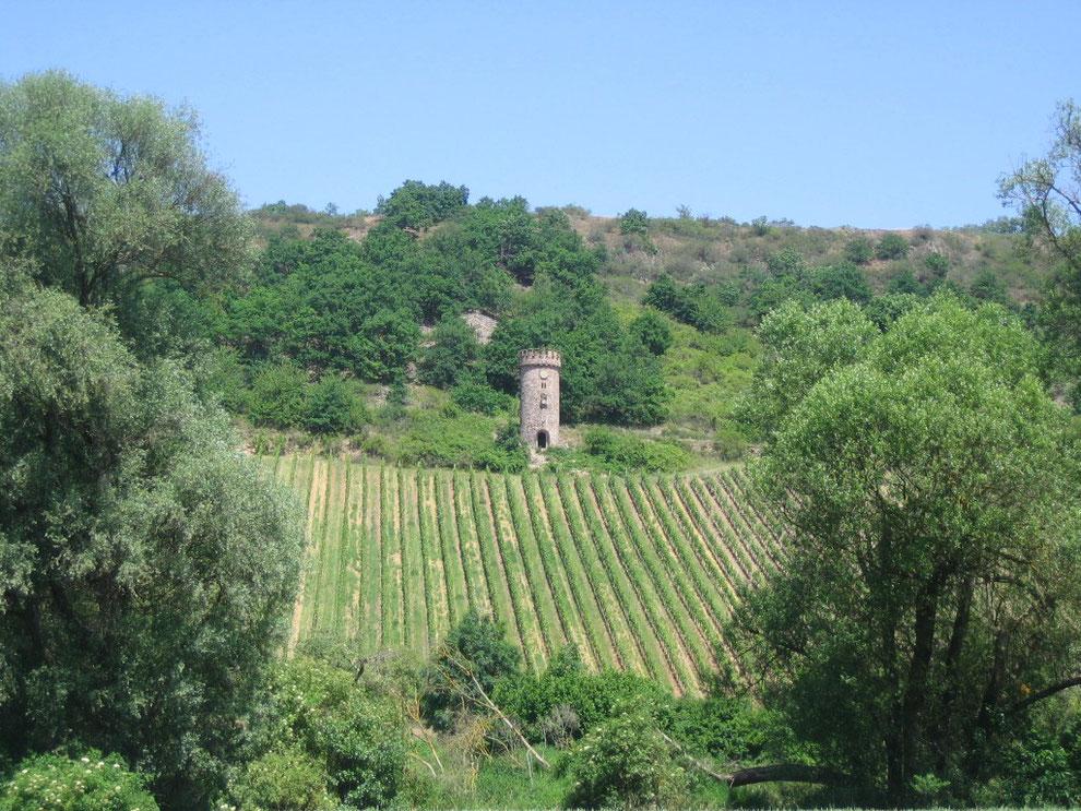 Ajaxturm, ein sagenumwobener Weinbergsturm bei Siefersheim