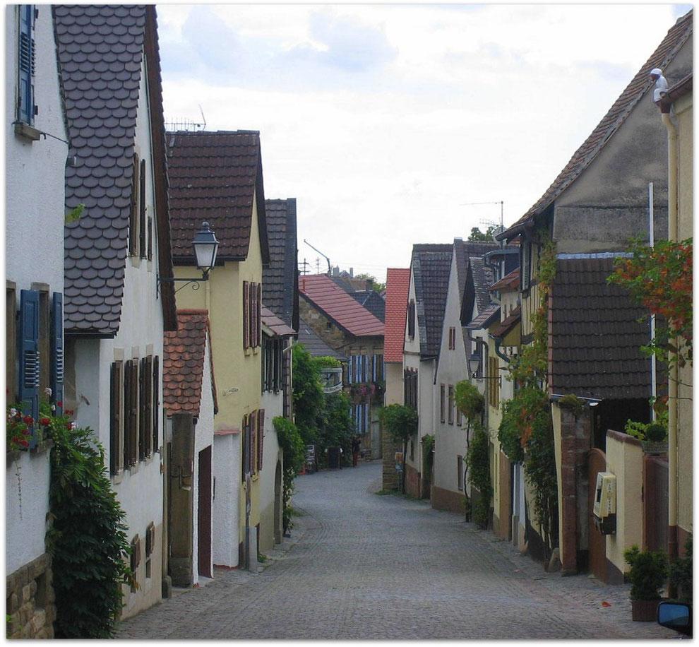 Forst/Dt. Weinstrasse