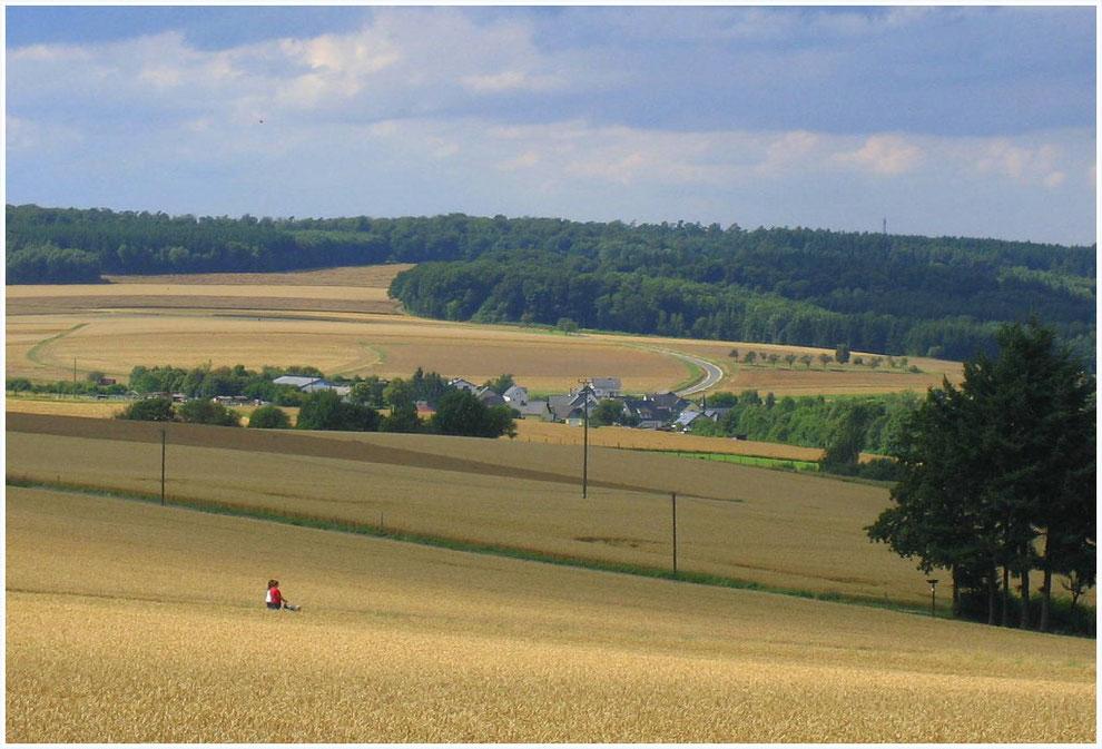 Am Schinderhannes-Radweg bei Lingerhahn, Hunsrück