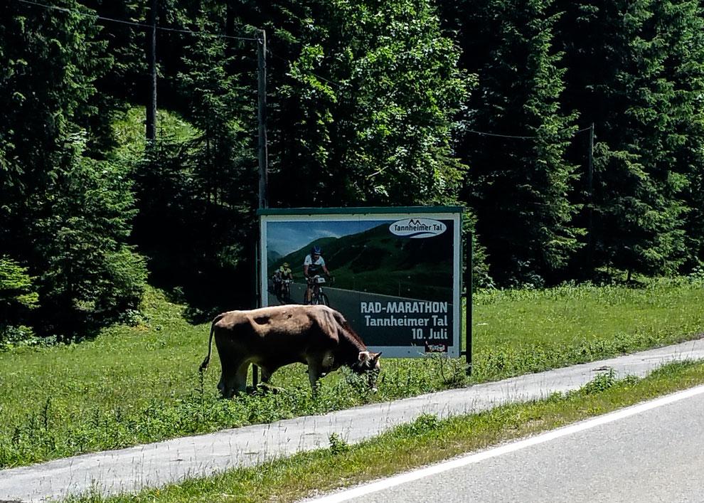 Da wollen wir hin: RAD-MARATHON Tannheimer Tal am 10. Juli 2016 😎