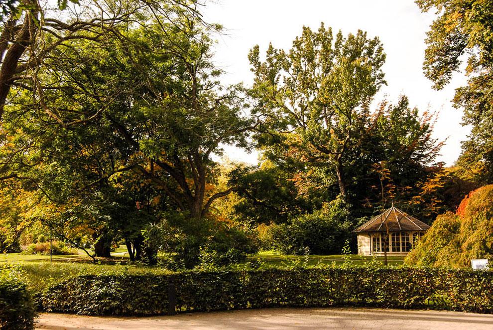 Der botanische Garten steht jedermann offen. Der Eintritt ist frei.