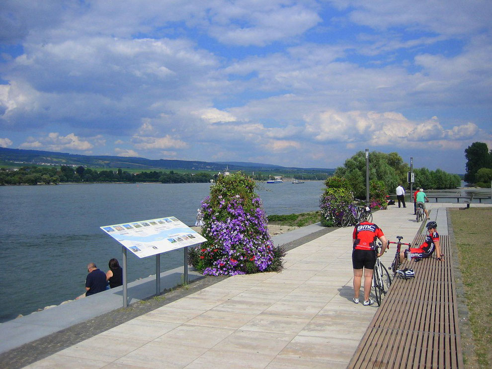 Unsere Bühne am Rhein