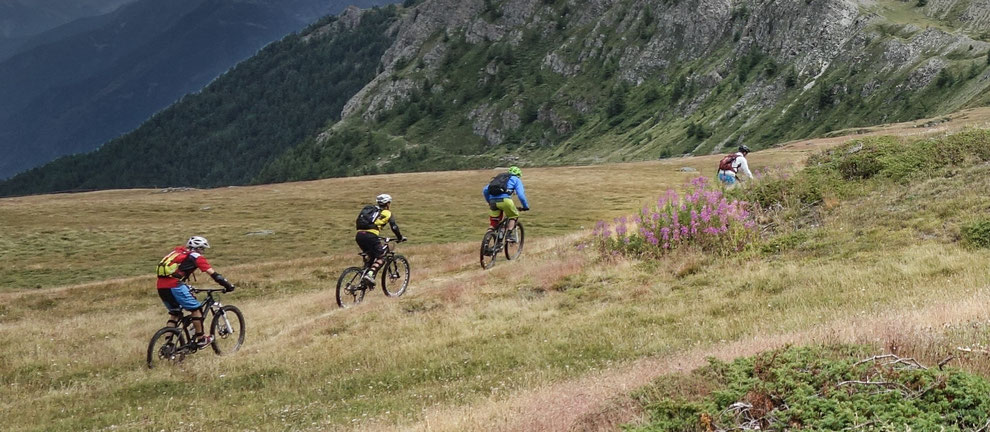 Mountainbike Tourism Concepts destination to market