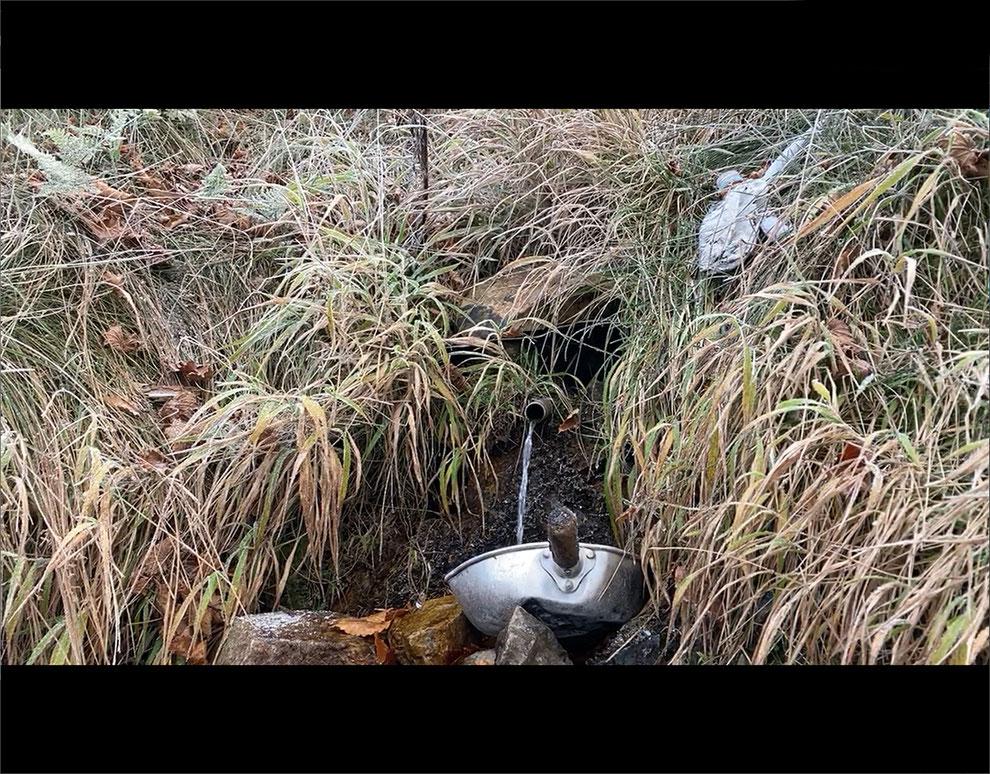 釈迦ヶ岳のかくし水