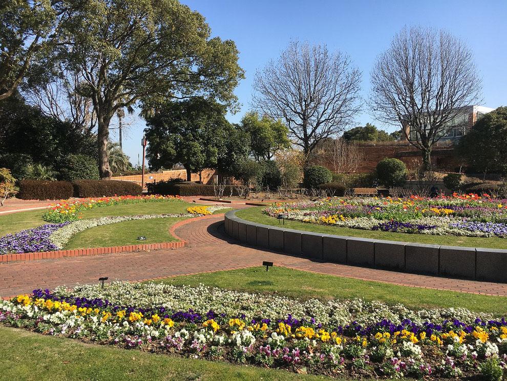 福岡市植物園 花壇
