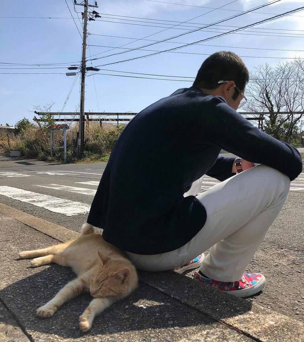 池島で一番仲良しの猫と