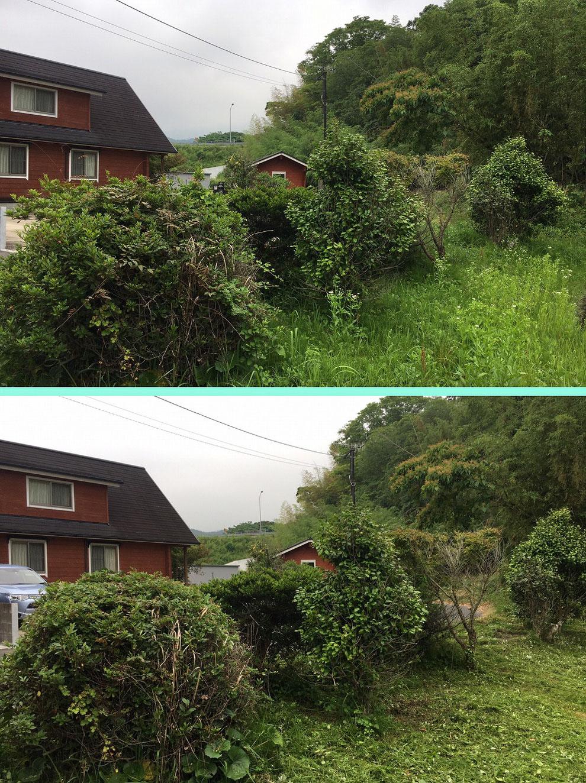 鎮懐石八幡宮の草刈り前と後その2