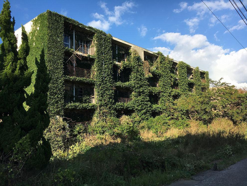 池島の鉱員住宅