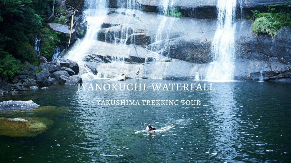 亜熱帯、照葉樹の森を抜けて、秘境・蛇之口滝へ